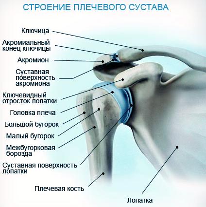 Лечение периартрита плечевого сустава: упражнения и симптомы