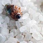 Морская соль снимает зуд и смягчает кожу