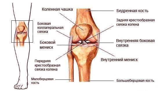 фото разрыва связок коленного сустава