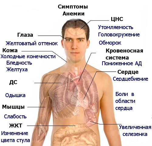 Аллергия лечить народные средства